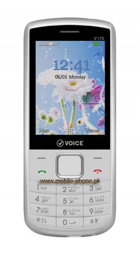 Voice V170
