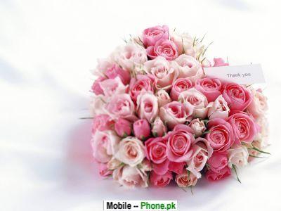 beautiful_rose_heart_others_mobile_wallpaper.jpg