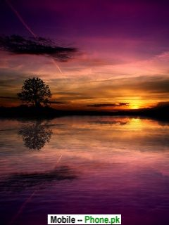 Evening Scenery Wallpapers Mobile Pics