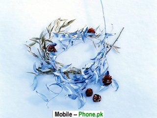leaf_nucleus_320x480_mobile_wallpaper.jpg
