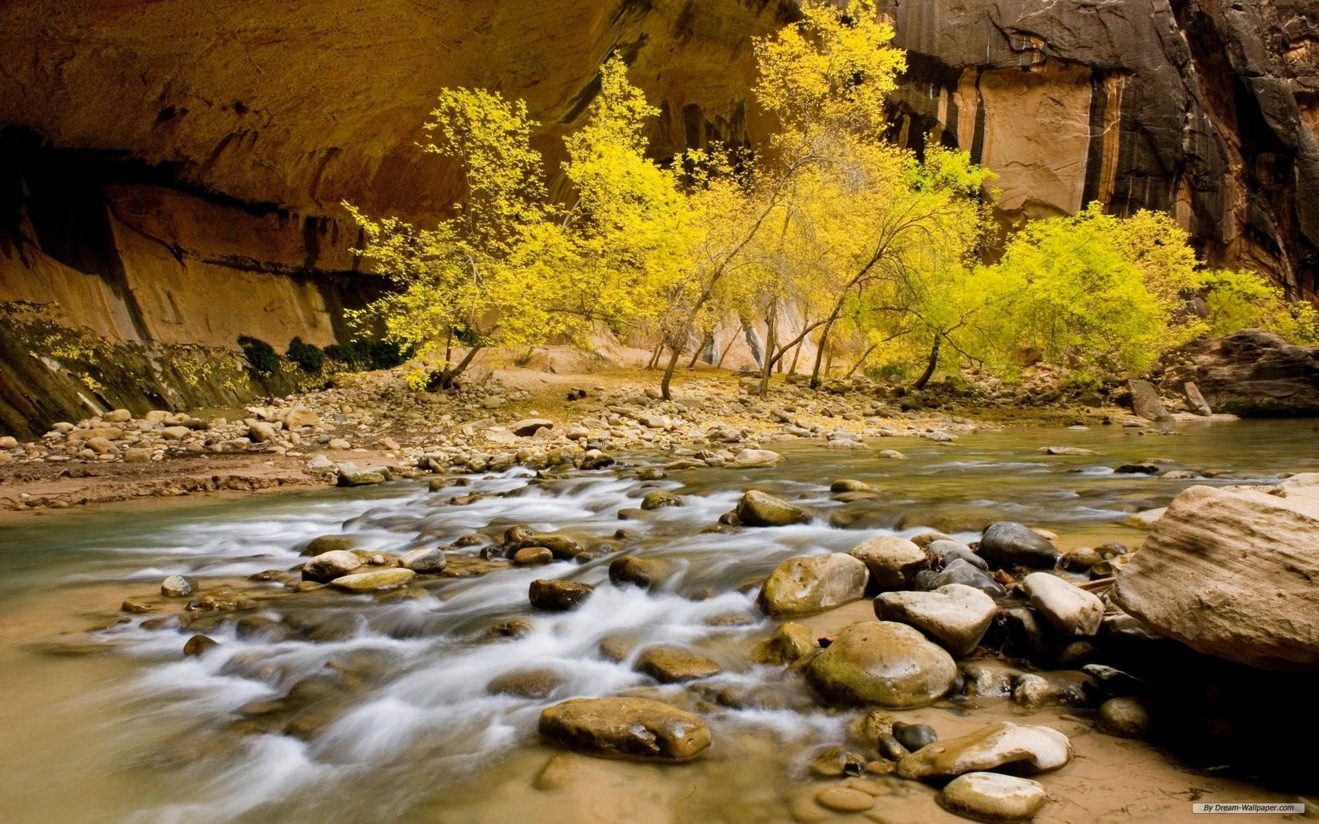 nature_stream_side_nature_mobile_wallpaper.jpg
