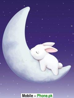 rabbit_sleep_at_moon_animals_mobile_wallpaper.jpg