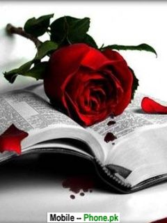 rose_in_book_holiday_mobile_wallpaper.jpg