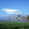 beautiful clouds Nature 320x480
