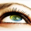 Beautiful eye Picture Nature 176x220
