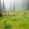 beautiful grasslands Nature 360x640