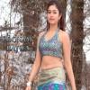 Beautiful Poonam Bajwa Bollywood 400x300