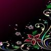 black flower background HD 360x640