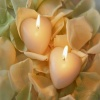 Dual Heart Candle Others 400x300