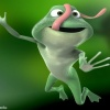 funny frog wallpaper Animals 240x320