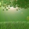 Green Morning Nature 176x220