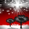 happy new year 2010 Holiday 320x480