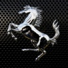 horse stand up wallpaper Animals 240x320
