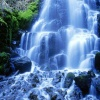 jungle waterfall Nature 320x480