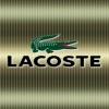 lacoste logo 240x320 240x320