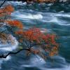 Nature Running Water 320x240 320x240