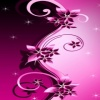 pink flower backgrounds HD 360x640