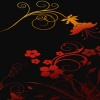 red flower background images HD 360x640
