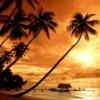 sunset theme 3D Graphics 176x220