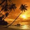 sunset wallpapers for desktop Nature 176x220