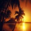 tropical beach sunset Nature 360x640