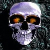Very Horror Skull Nature 176x220