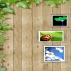 wall scenery picture HD 360x640