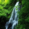 waterfall in forest Nature 360x640