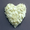 White Petals heart Others 400x300