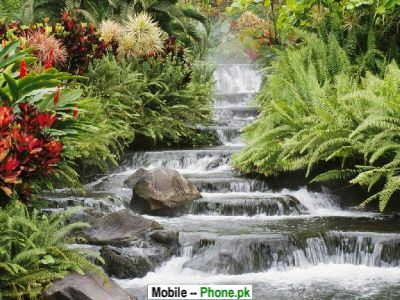 stair_waterfall_nature_mobile_wallpaper.jpg
