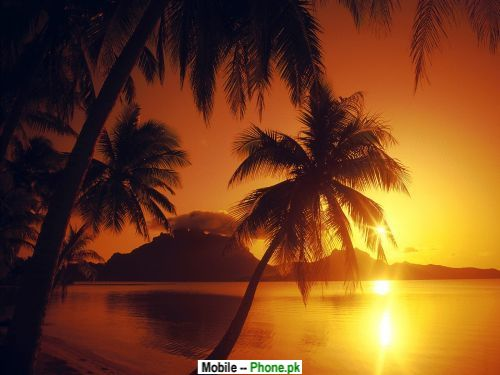 beach sunset wallpaper. Tropical each sunset