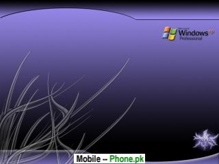windows_xp_3d_lines_320x240_mobile_wallpaper.jpg